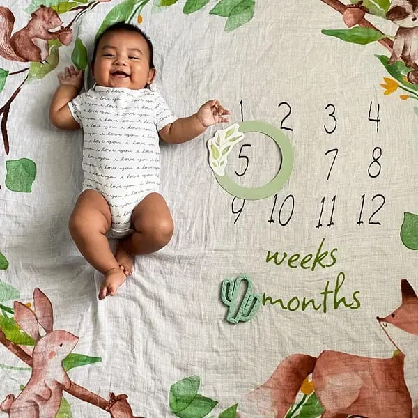 Itzy Ritzy Cutie Captures Woodland Animals Milestone Blanket