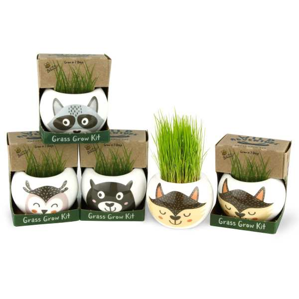 BUZZY Wild Adventures Ceramic Character Planters – Racoon, Fox, Owl, and Bear