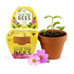 Classic Terracotta Grow Kit – Save the Bees Series