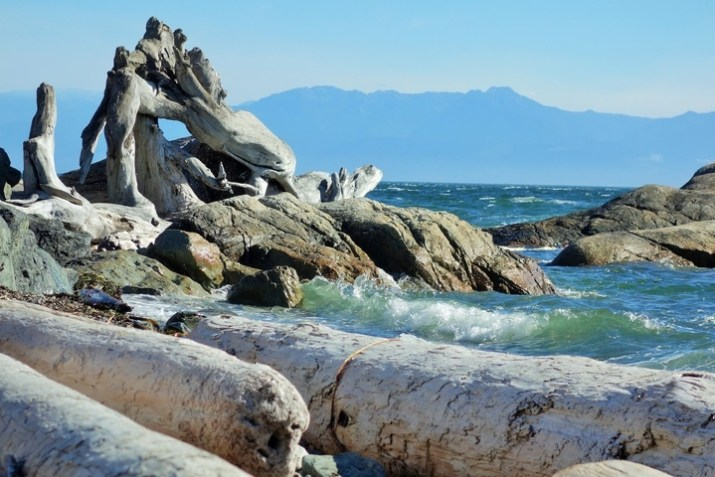 The Best Way To Experience Victoria BC in 48 Hours 1