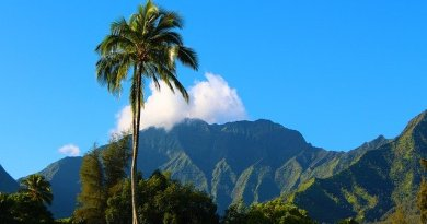 Proof That KAUAI Is Exactly What You Are Looking For