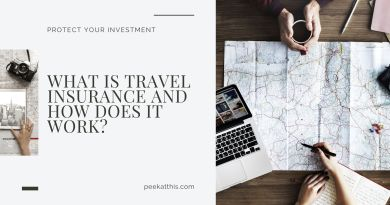 What Is TRAVEL INSURANCE and How Does It Work?
