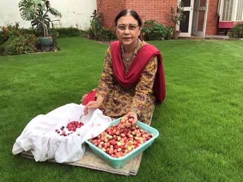 homemade in ludhiana