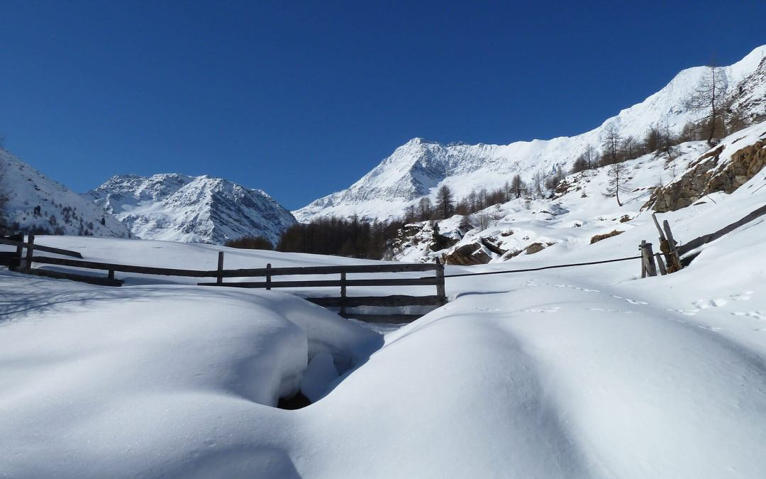 5 winter hikes to enjoy the first snow in the Alps