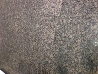 Floor Restoration (30)