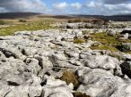Limestone pavement. Clints and grikes.