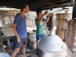 And this is how we'll get the steam and rice wine