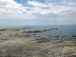 Kaikoura's coast