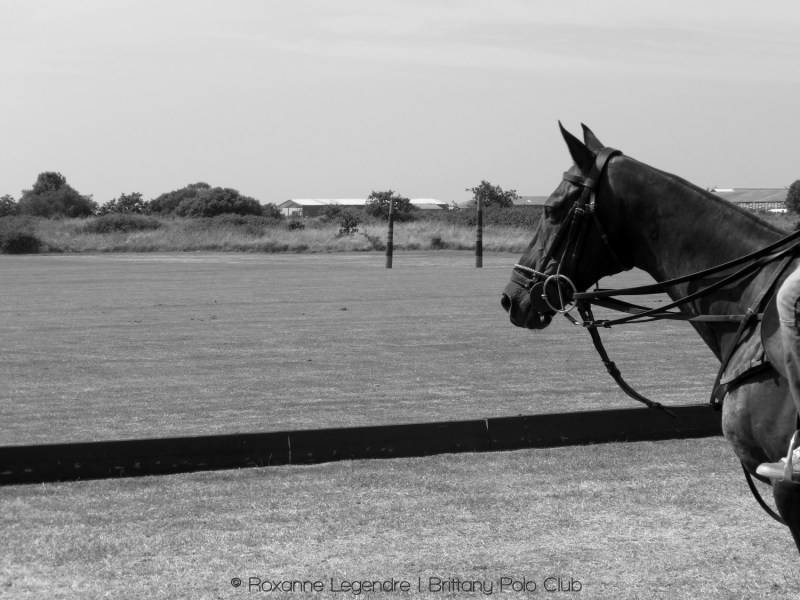Brittany Polo Club | Photographer : Roxanne Legendre
