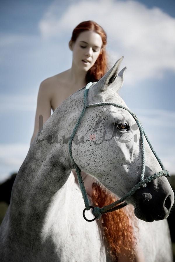 www.pegasebuzz.com | Luru Wei : Bare All Nude Horses