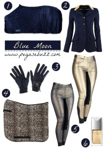 www.pegasebuzz.com | Equestrian fashion : blue moon