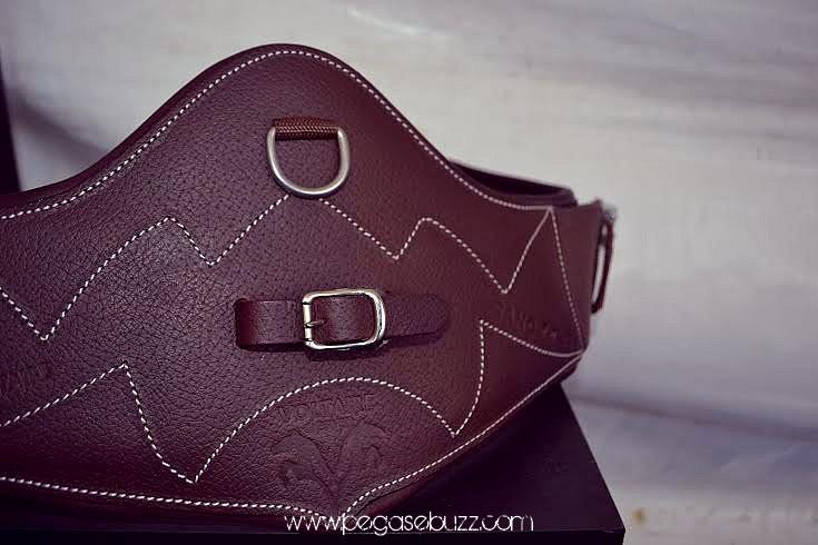 www.pegasebuzz.com   Voltaire Design saddle