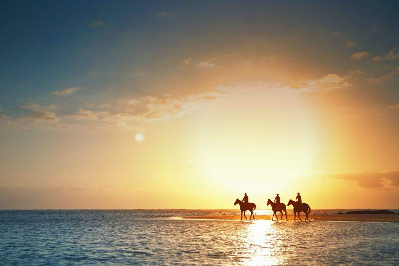 www.pegasebuzz.com   LUX Belle Mare Mauritius horse riding