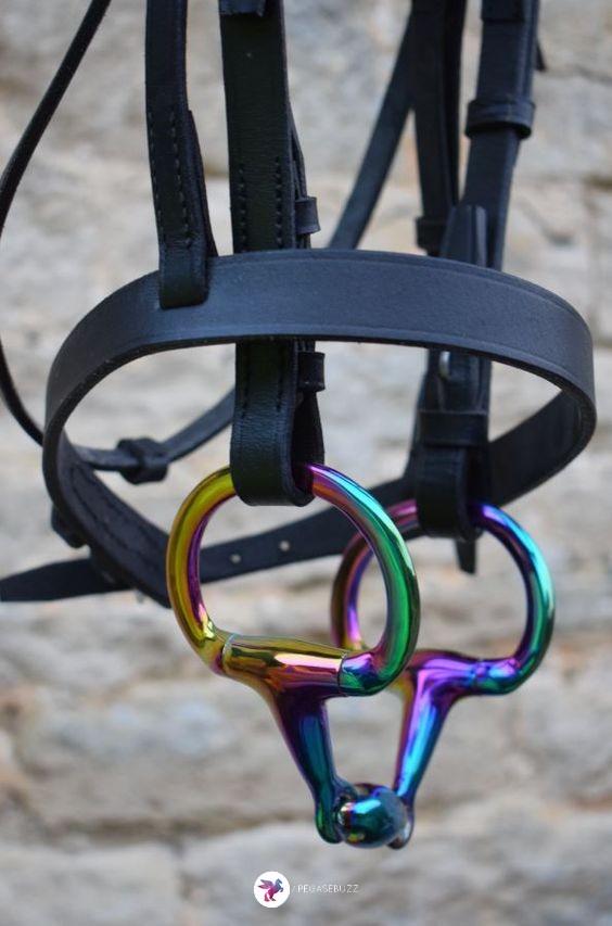 www.pegasebuzz.com   Equestrian Fashion : rainbow gloss horsebit by EvoEquine