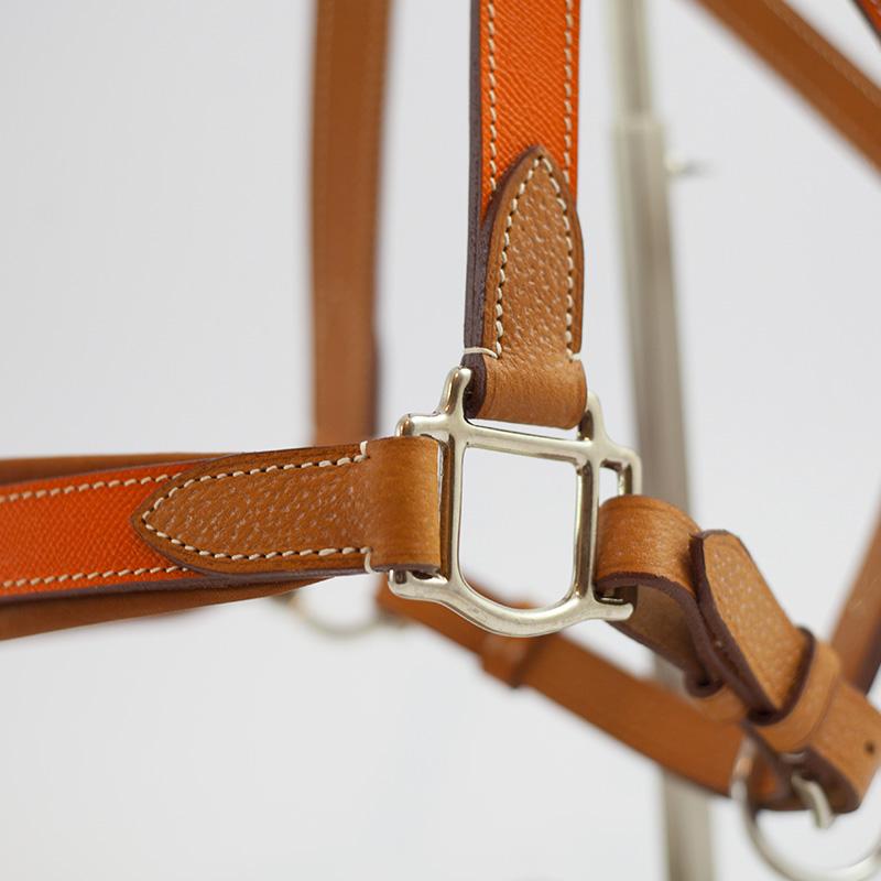www.pegasebuzz.com | Equestrian fashion : licol coloré en cuir Pravins Sellier