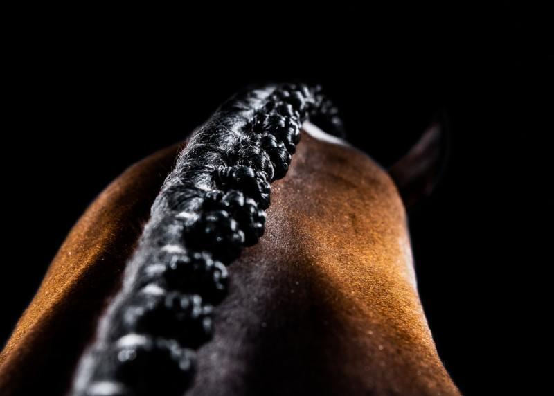www.pegasebuzz.com | Equestrian photography : Philippa Davin.