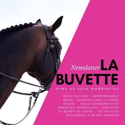 Newsletter cheval filière équine