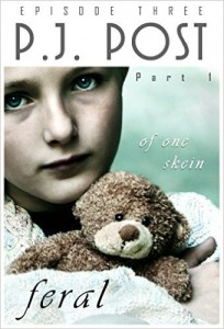 Of One Skein by P.J. Post