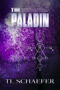 The Paladin by T.L. Schaefer