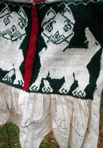 11.3 close up green lion