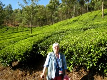 10.1 Peggy in a tea field