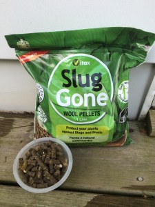 Bag of Slug Gone with pellets in a plastic container