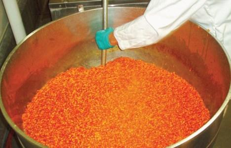 Solberry sea buckthorn berries - Deseeding process at The Food Development Centre, Portage la Prairie.