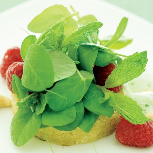 Minted Raspberry and Pea Shoot Salad on Brioche by Chef Lorna Murdochof fusion grill