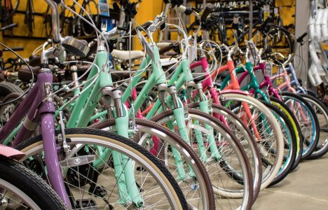 Woodcock Cycle Winnipeg