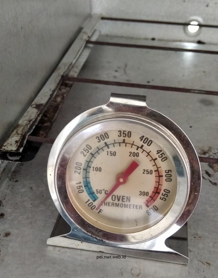 Pemakaian Termometer Oven: Diletakkan di Dasar Oven