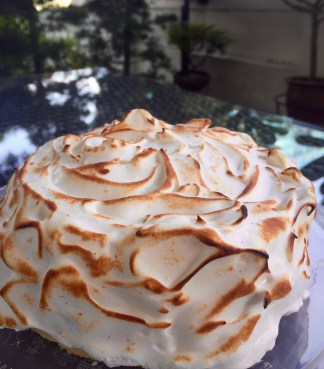 Lemon Meringue Cake!