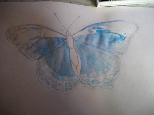 bleu_papillon