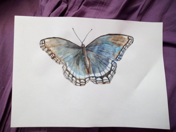 papillon_final