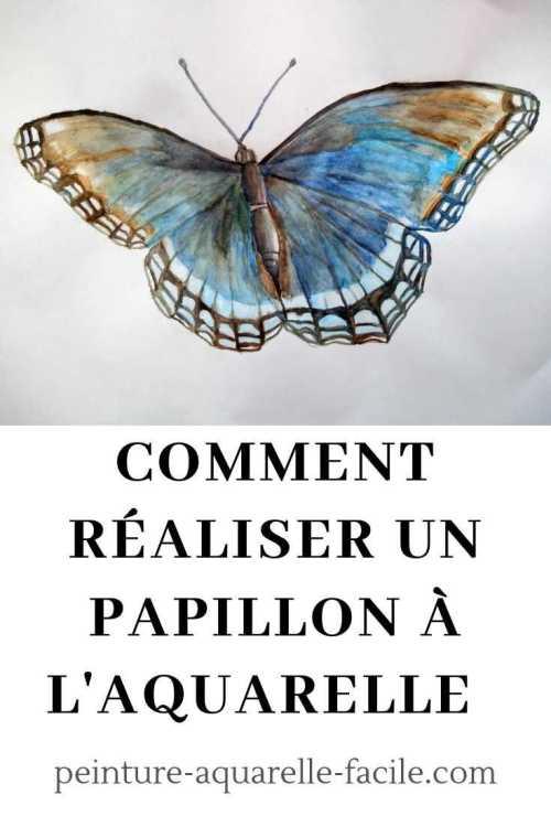 Ma Premiere Aquarelle Un Papillon Pas A Pas Peinture Aquarelle