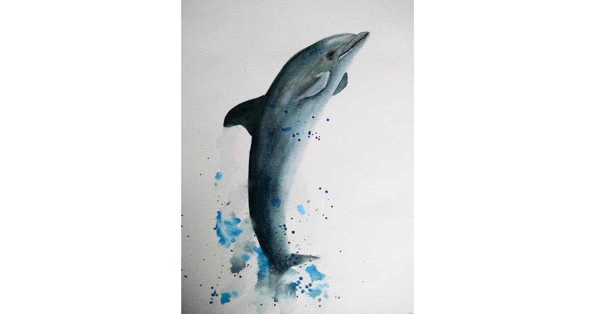 Peindre un dauphin à l'aquarelle (vidéo)