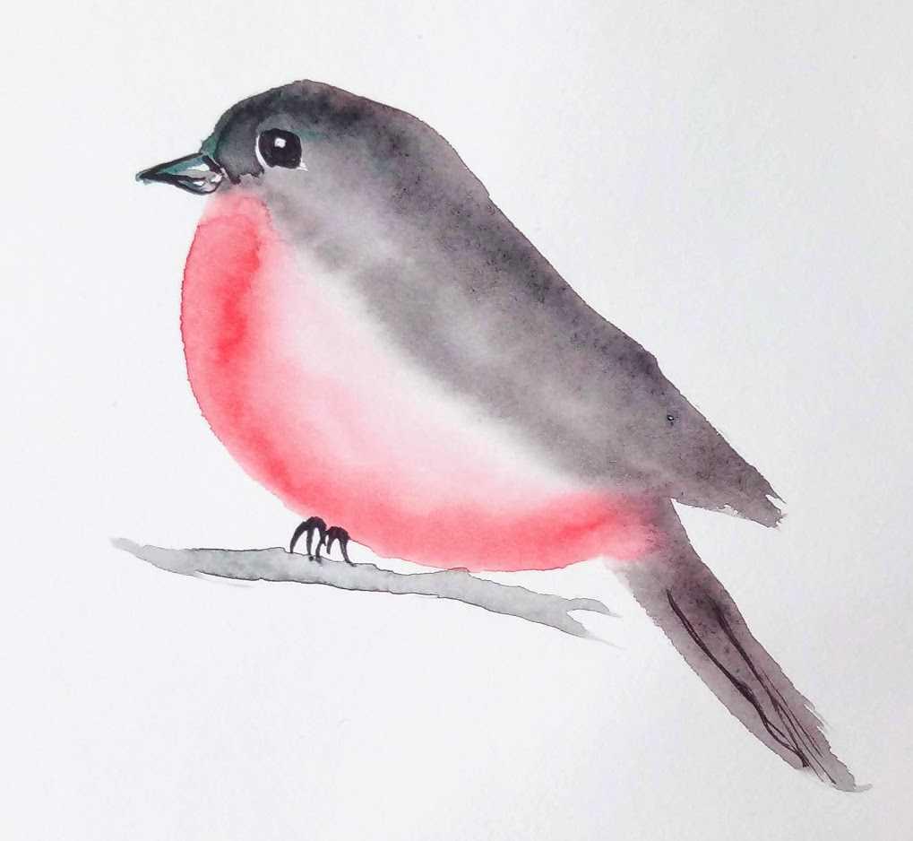 Un oiseau à l'aquarelle en 3 minutes chrono !