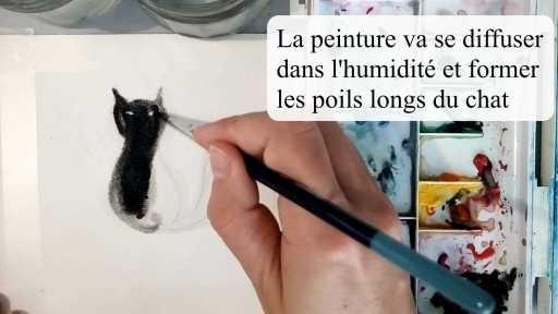 la peinture va se diffuser dans l'humidité et former les poils longs du chat
