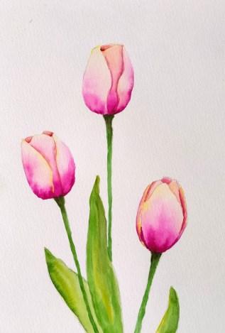 Tulipes à l'aquarelle : doser l'eau