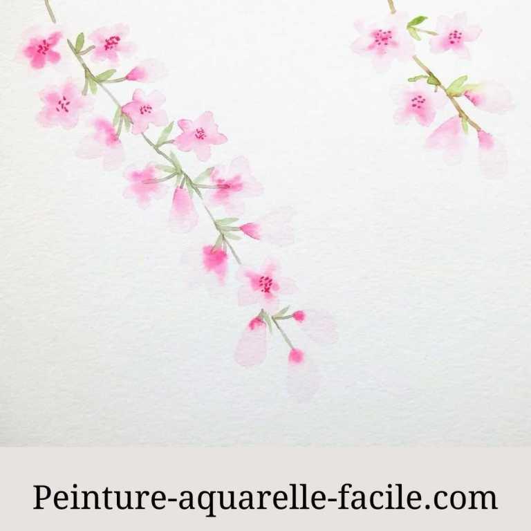 Des fleurs de cerisier à l'aquarelle avec un dessin varié