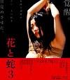 Cartel de la película erótica Japonesa