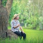 manfaat teknologi bidang pertanian