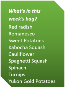 Week 2 Fall 2018_veg list.png
