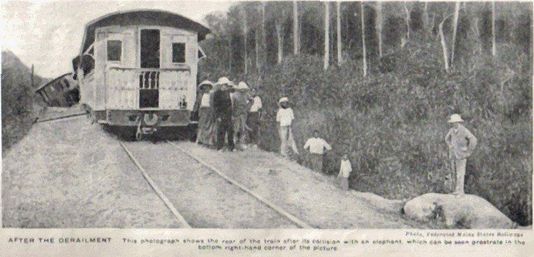 Pelanggaran Kereta Api Dengan Gajah Di Teluk Anson