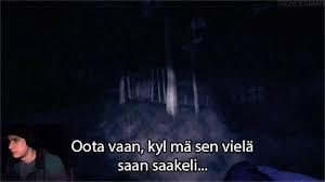 lvika2