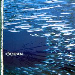 The_Ocean_Fluxion_original
