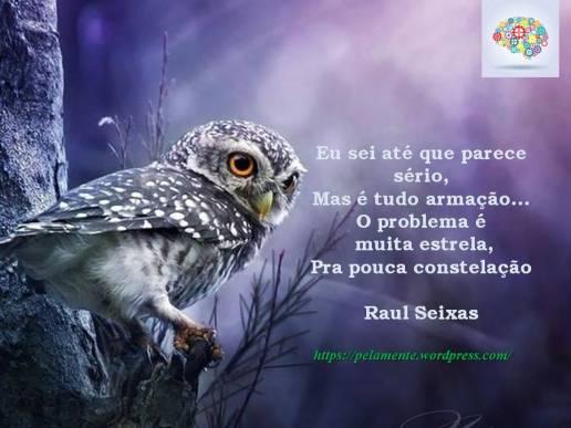 Constelação - Raul Seixas