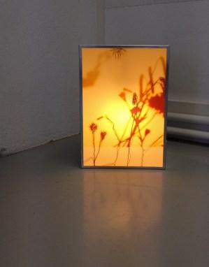 lichtbox_006