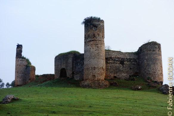 A la sortie d'El Real de la Jara, le castillo de las Torres, château médiéval. © Fabienne Bodan