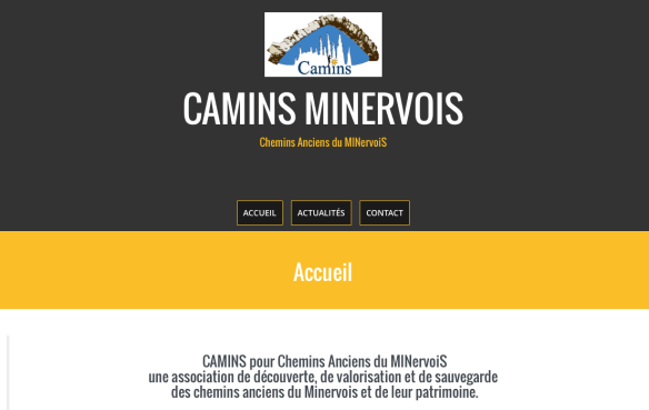 Capture d'écran du site de l'association Camins