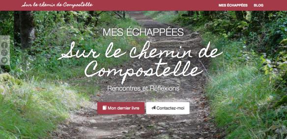 Capture d'écran du site internet de René Simon